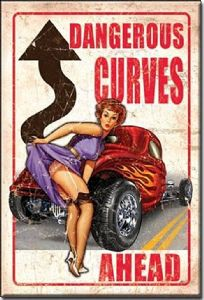 Dangerous Curves Ahead steel fridge magnet     (de)